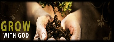 Grow with God a plant growing